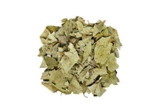Efectos secundarios de las hojas de Sen